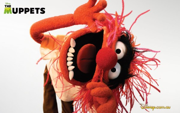 1280x800_MuppetsWallpaper_Animal