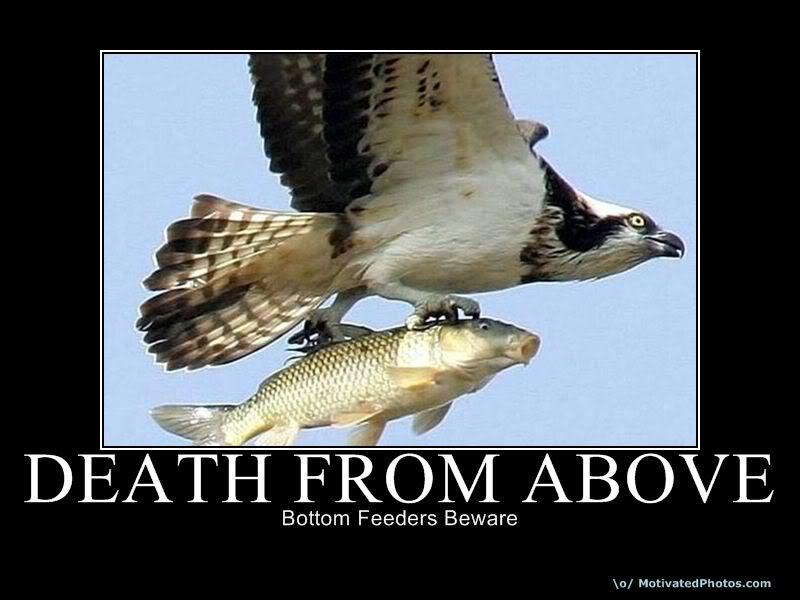 DeathFromAbove